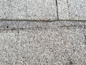Discontinued Atlas Chalet Shingles - Creased Shingle (Possible Wind Damage)