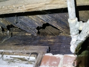 Deteriorated Subfloor from Previous Fire