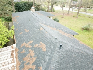 Lifeline Home Inspections - Chattahoochee Hill, GA
